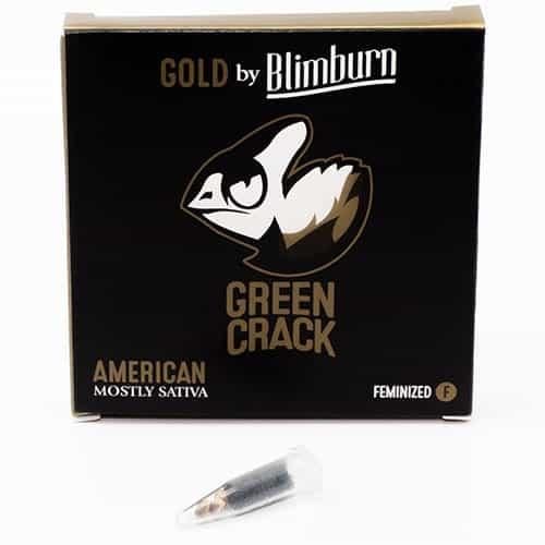 cannabis seeds pack