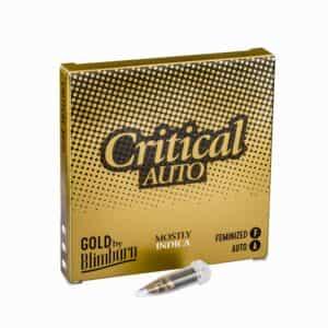 CRITICAL AUTO cannabis seeds pack