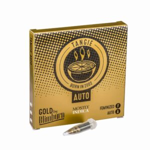 TANGIE AUTO cannabis seeds pack