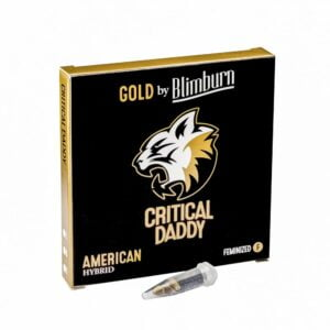 CRITICAL DADDY cannabis seeds pack